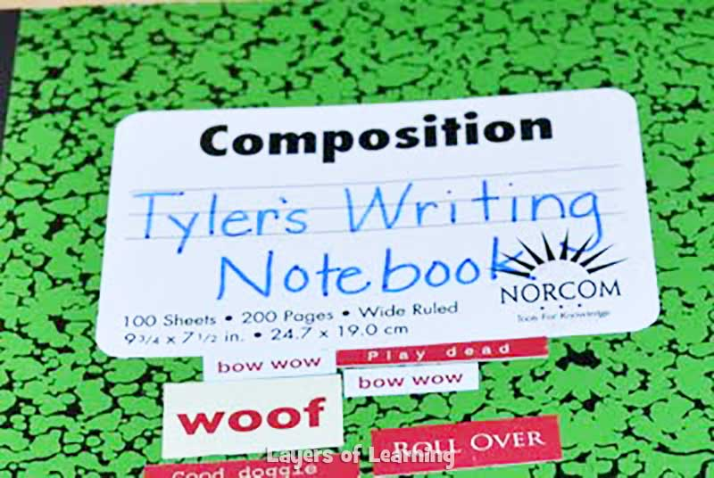 Writer's-Notebook